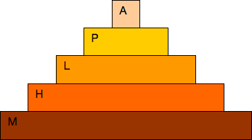 hierarchie.png